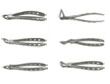 Picture of Extraction Forceps Set option for Extraction Forceps Set product (BlueSkyBio.com)