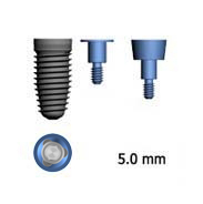 Picture of 5.0mm Implants (BlueSkyBio.com)
